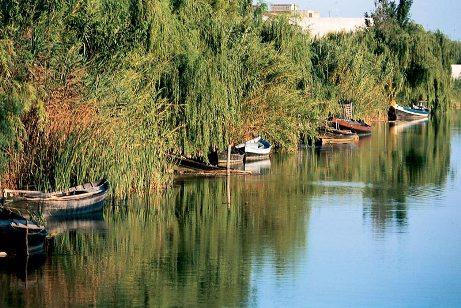 parco naturale albufera valencia