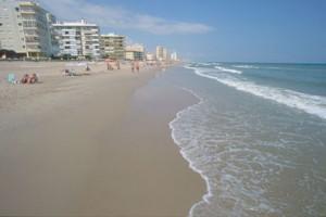 8865_valencia_vista_parziale_della_spiaggia