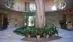 entrata_giardino_botanico_valencia
