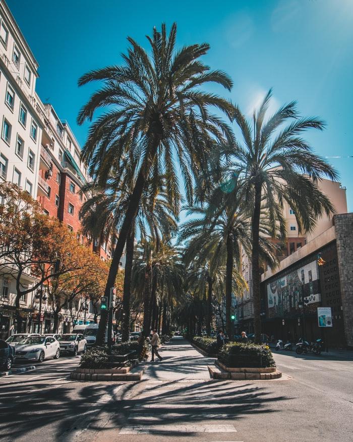Valencia città accessibile: l'importanza di rendere una città accessibile a tutti